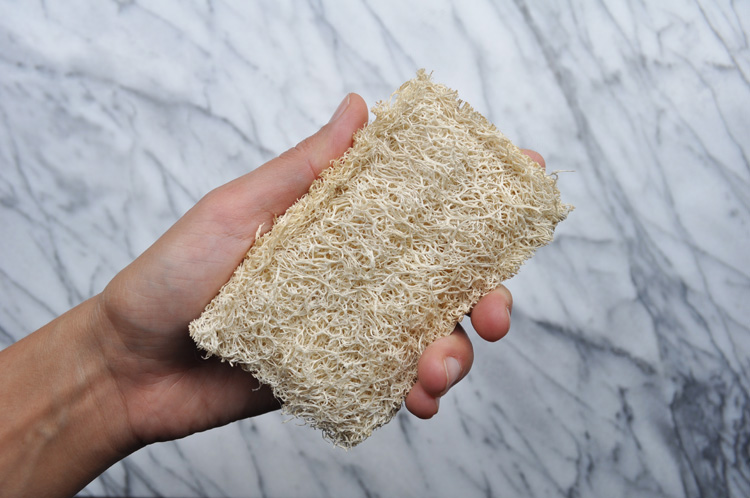 Eco-Friendly Alternatives to Sponges
