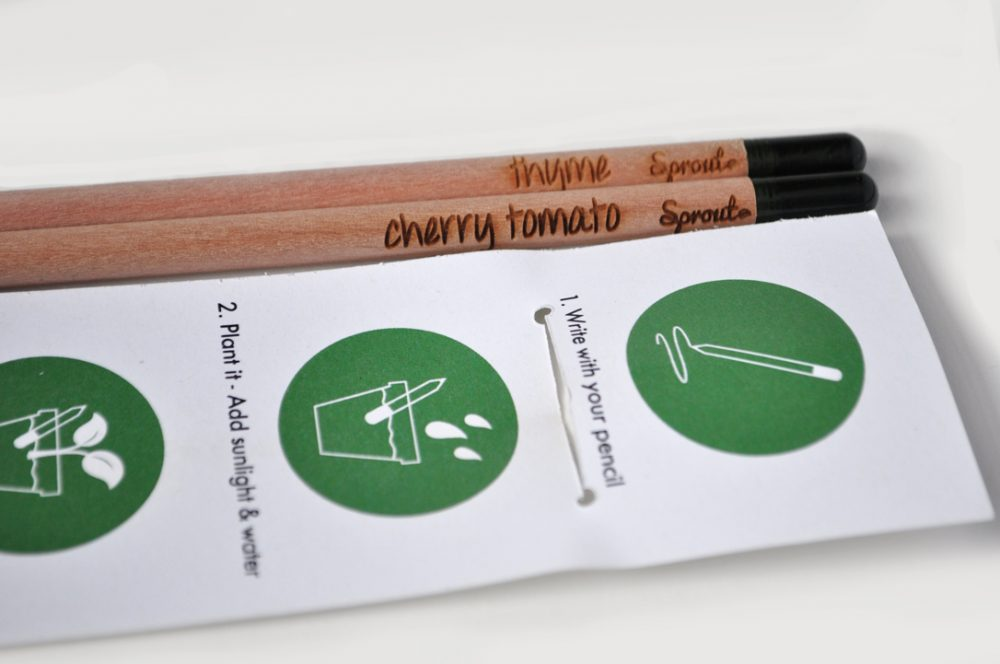 Image of Sprout Colored Pencils, the perfect addition to this holiday gift guide