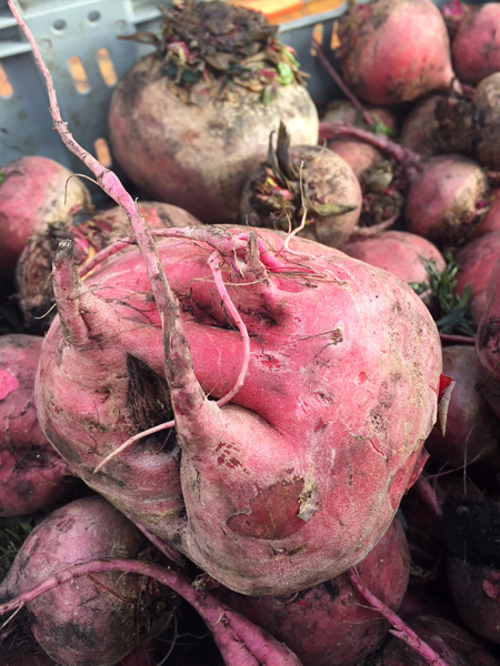 Image of a Beet