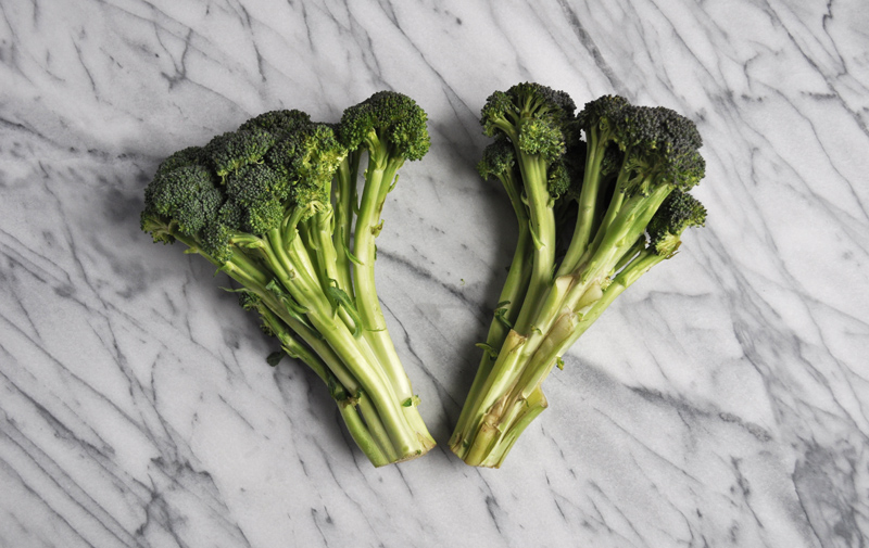Image of 2 heads of broccoli on a marble countertop