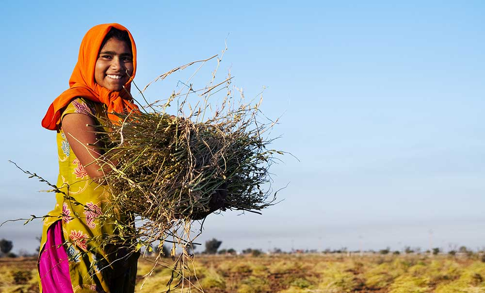 image of a girl carrying a bushel of branches in a field