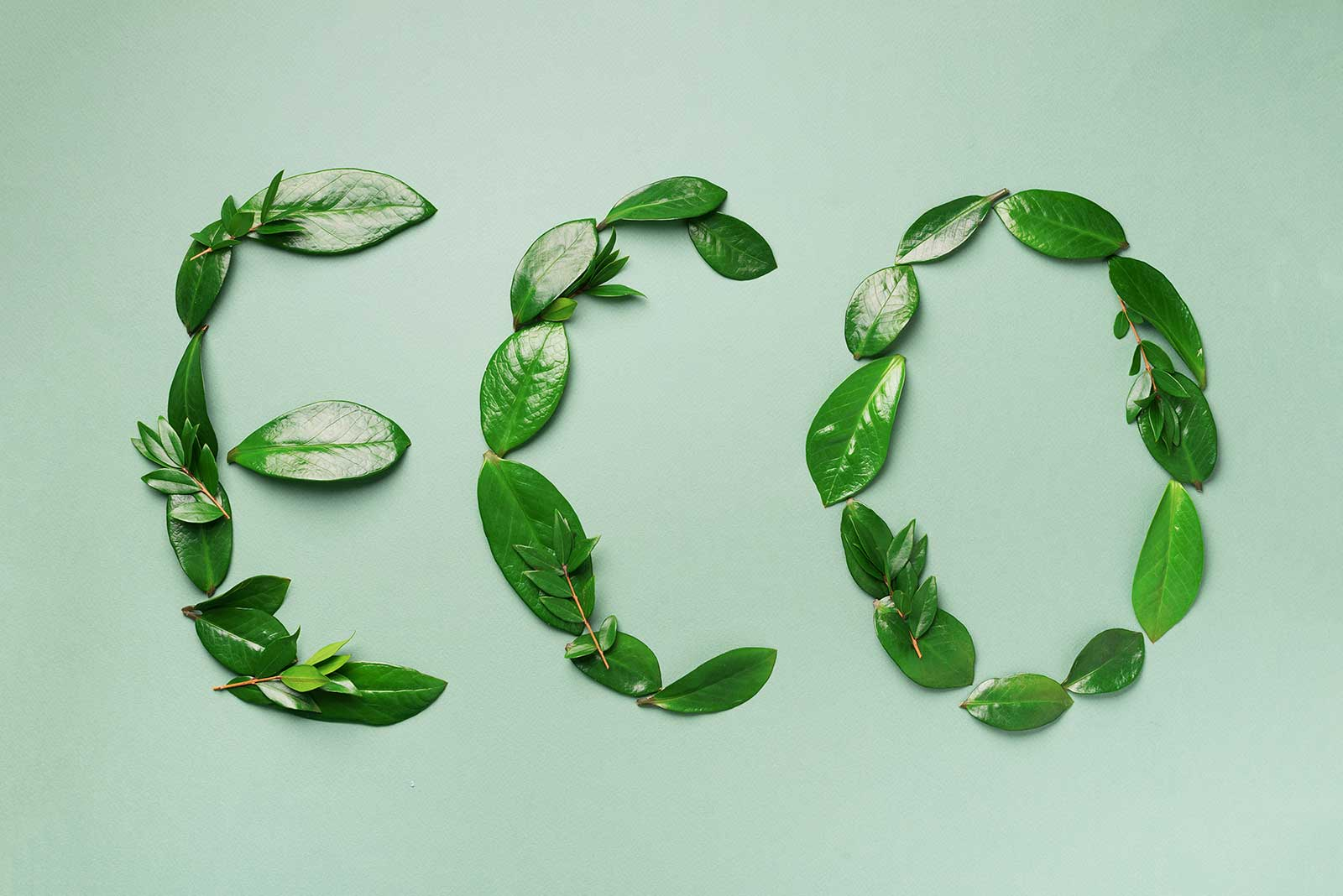 What is Greenwashing? And how can I spot it?