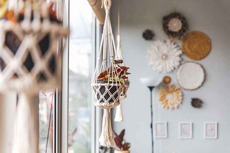 Image of a plant in a macramé plant hanger in the window