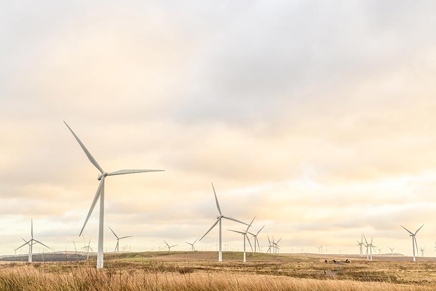 Image of a wind farm at sunrise