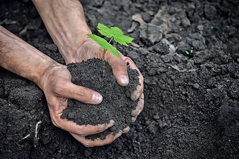What the heck is Carbon Sequestration?